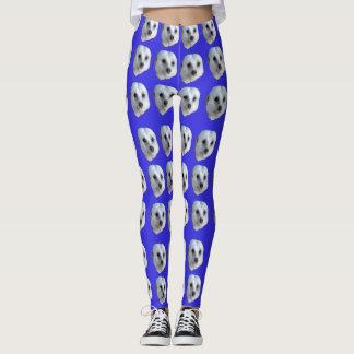 White Meerkat Faces On Blue, Leggings