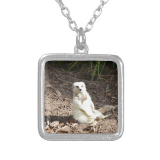 White_Meerkat_Grins,_Square_Pendant_Necklace. Silver Plated Necklace