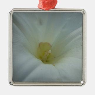White morning glory center Silver-Colored square ornament