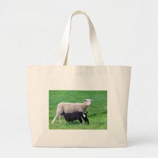 White mother sheep with two drinking black lambs large tote bag