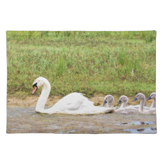 White mother swan swimming in line with cygnets placemat