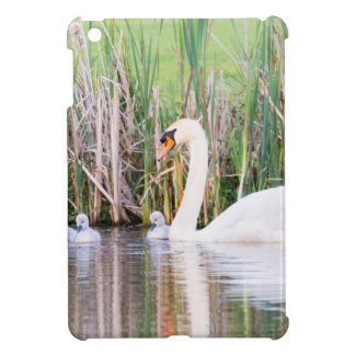 White mother swan swimming with chicks case for the iPad mini