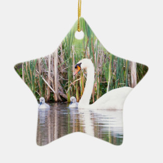 White mother swan swimming with chicks ceramic star ornament