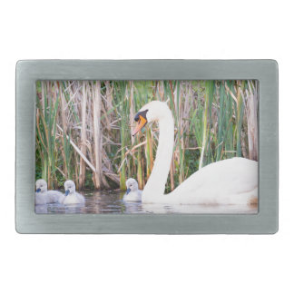 White mother swan swimming with chicks rectangular belt buckle