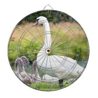White mother swan with young chicks dartboard