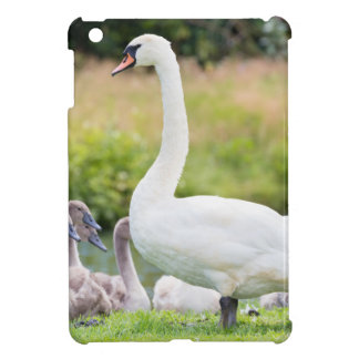 White mother swan with young chicks iPad mini cover