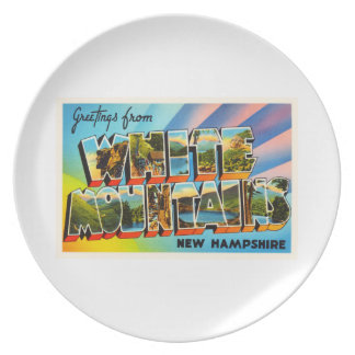 White Mountains New Hampshire NH Travel Souvenir Dinner Plate