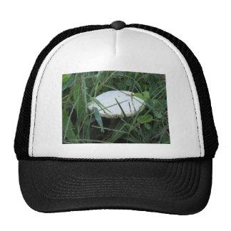 White mushroom on a green meadow trucker hat