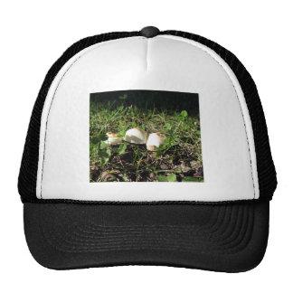 White mushrooms on green background trucker hat