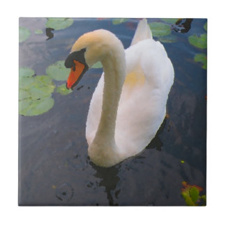 White Mute Swan Photo Ceramic Tile