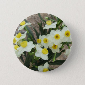 White Narcissus Flowers Button