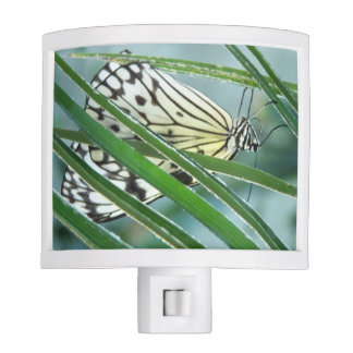 White Nymph Butterfly Night Light
