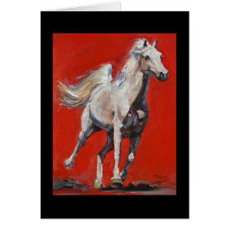 White on Red Arabian horse card