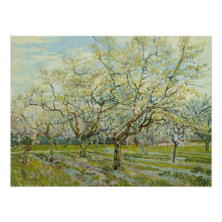 White Orchard by Vincent Van Gogh Poster