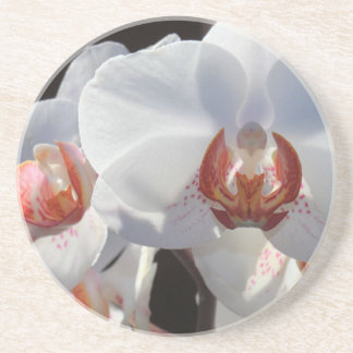 White Orchid Beverage Coaster