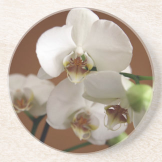 White orchid coaster