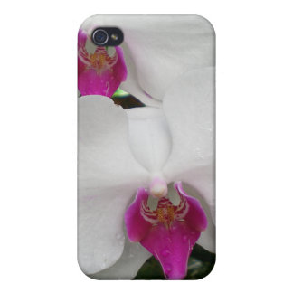 White Orchid  Covers For iPhone 4