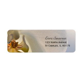 White Orchid Elegance Return Address