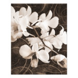 White Orchid Flower Sepia Black Background floral Photo Print