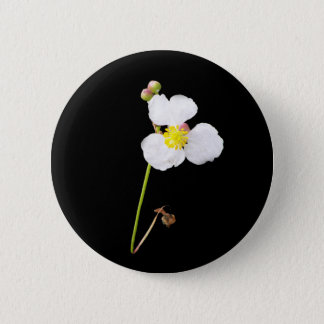 White Orchid Gifts and Apparel 2 Inch Round Button