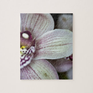 White Orchid Jigsaw Puzzle