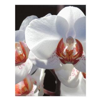 White Orchid Letterhead