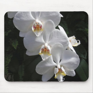 White Orchid Mousepad