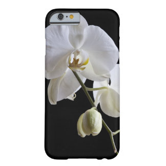 White Orchid on Black iPhone 6 Barely There iPhone 6 Case