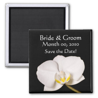 White Orchid on Black Magnet