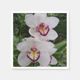 White Orchids Beautiful Tropical Flowers Napkin