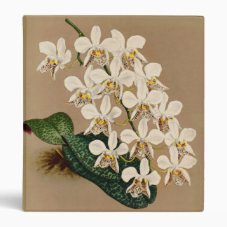 White Orchids Botanical Print, Tan Background Binders
