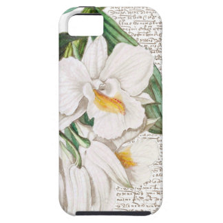 White Orchids Calligraphy iPhone 5 Covers