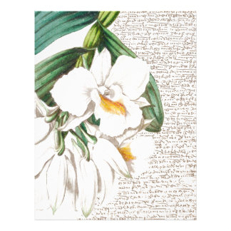 White Orchids Calligraphy Letterhead