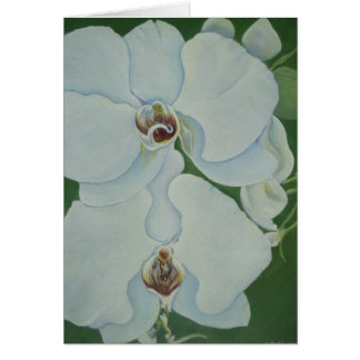 White Orchids Card