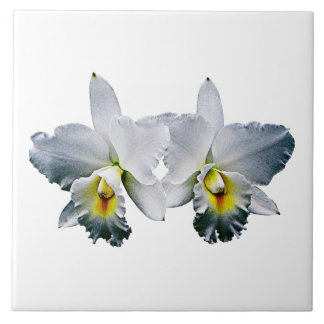 White Orchids Hawaiian Wedding Song Ceramic Tile