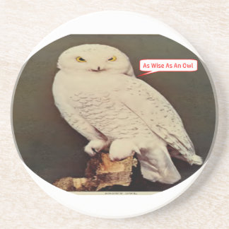 white owl drawing coaster