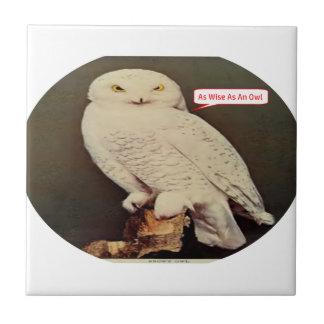 white owl drawing tile