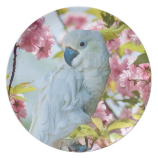 White Parrot in Tree Plate