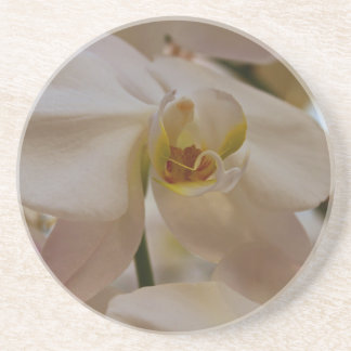White Peabody Orchid II Coaster