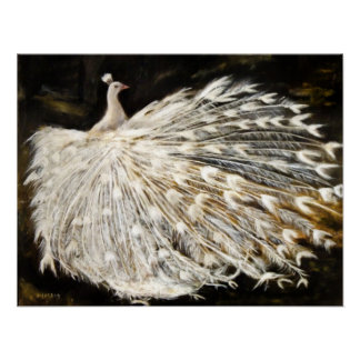 White Peacock Painting Print Posters Art