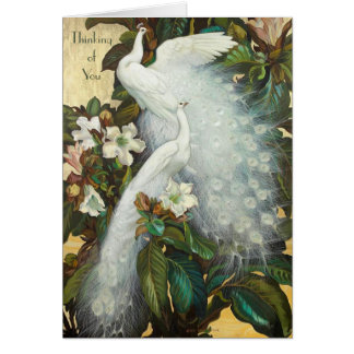 White Peacocks Roosting Card