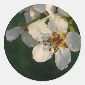 White Pear Blossom Envelope Seals