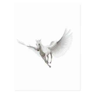 White Pegasus Postcard