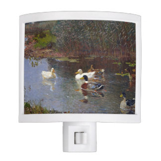 White Pekin Ducks Birds Animals Night Light