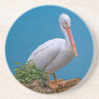White Pelican Coaster
