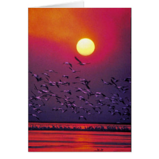 White Pelican in Haze Greeting Card