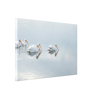 White Pelicans Wrapped Canvas Print