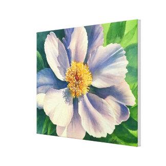White Peony - Watercolor - canvas 16x20