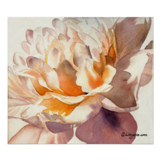 White Peony Watercolor Poster Print