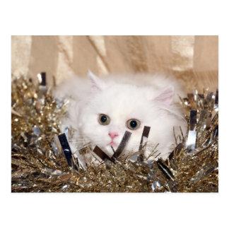 White Persian cat Christmas Postcard